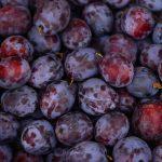 Von Zwetschgen und anderen Früchten